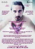 The Necessary Death of Charlie Countryman (Опасная иллюзия), 2013