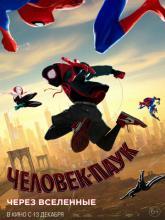 Spider-Man: Into the Spider-Verse, Человек-паук: Через вселенные