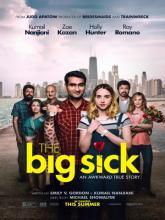 The Big Sick, Любовь – болезнь