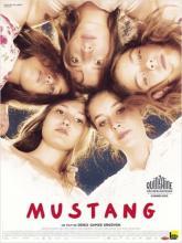 Mustang, Мустанг