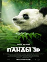 Pandas, Панды 3D
