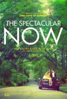 The Spectacular Now, Захватывающее время