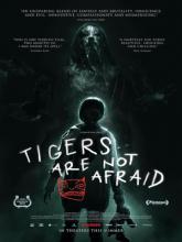 Os Tigres Nao Tem Medo, Тигры не боятся
